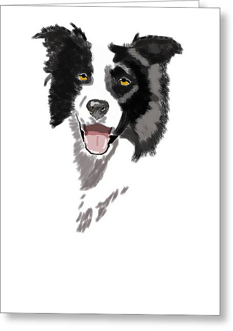 Owner Digital Greeting Cards - Border collie Greeting Card by Bob Donner
