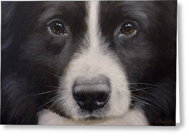 Collie Greeting Cards - Border Collie Close up Greeting Card by John Silver