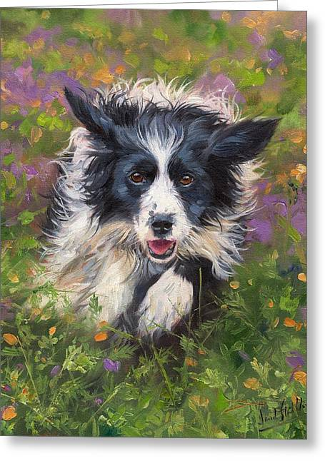 Collie Greeting Cards - Border Collie Greeting Card by David Stribbling