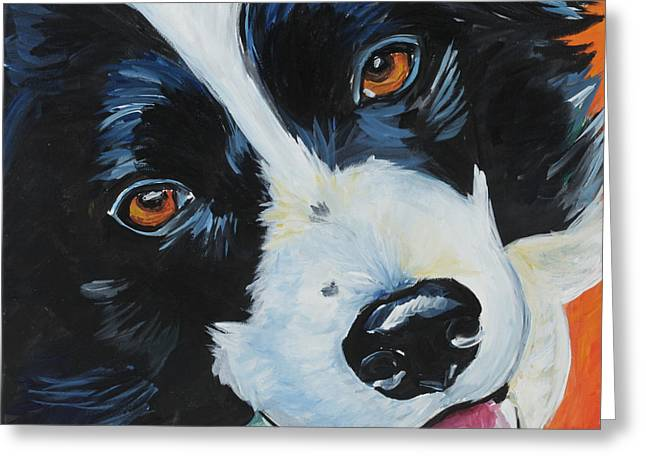 Collie Greeting Cards - Border Collie Greeting Card by Melissa Smith