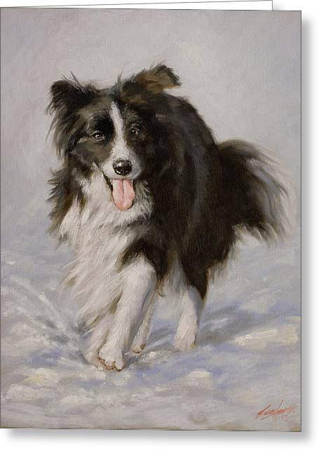 Collie Greeting Cards - Border Collie portrait I Greeting Card by John Silver