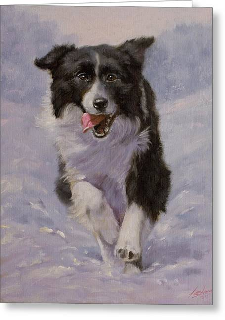 Border Collie Portrait II Greeting Card by John Silver