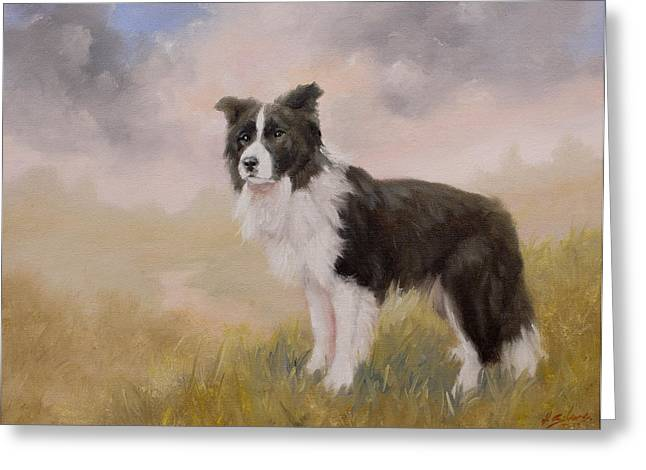 Collie Greeting Cards - Border Collie portrait IV Greeting Card by John Silver