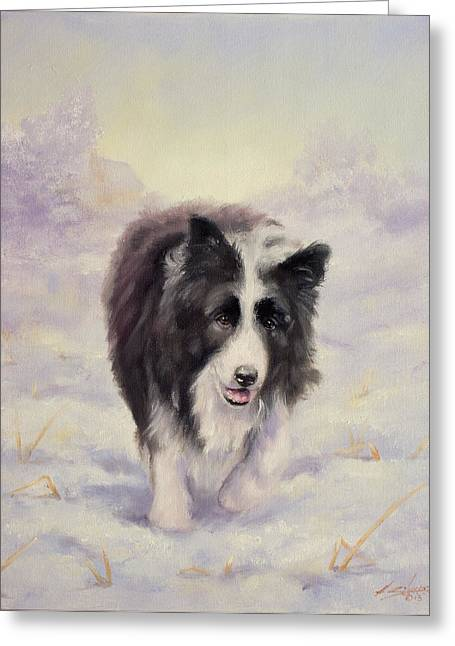 Collie Greeting Cards - Border Collie portrait V Greeting Card by John Silver
