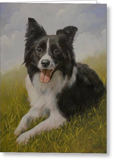 Snow Tree Prints Greeting Cards - Border Collie portrait VII Greeting Card by John Silver