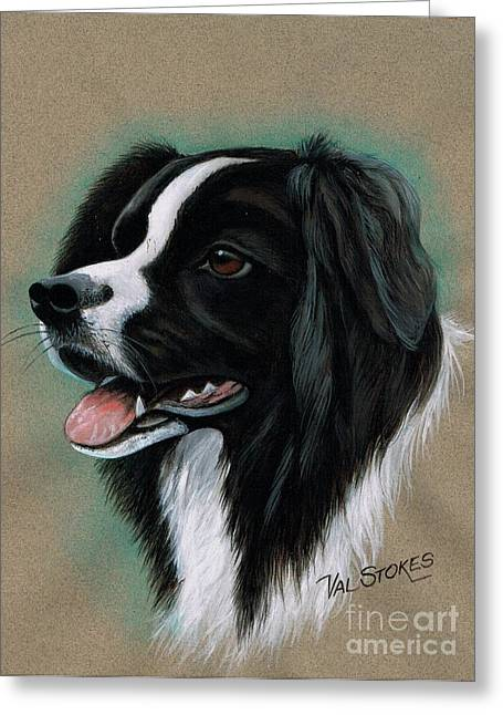 Border Pastels Greeting Cards - Border Collie Greeting Card by Val Stokes