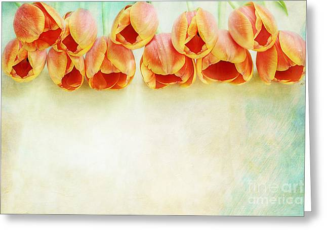 Easter Flowers Greeting Cards - Border of Orange Tulips Greeting Card by Stephanie Frey