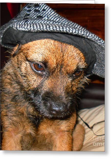 Flat Cap Framed Prints Greeting Cards - Border Terrier Maggie Greeting Card by Jonathan Steward