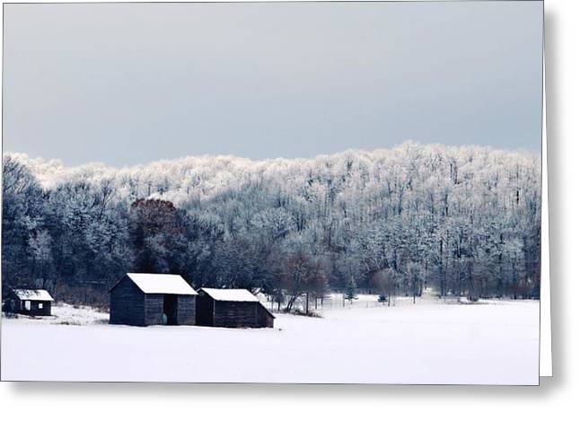 Barn Covered In Snow Greeting Cards - Boreal Greeting Card by Michele Thielke