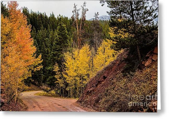 Boreas Greeting Cards - Boreas Pass Autumn Greeting Card by Jon Burch Photography