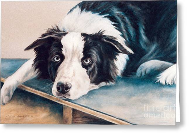 Collie Pastels Greeting Cards - Bored Border on Board Greeting Card by Linda Shantz