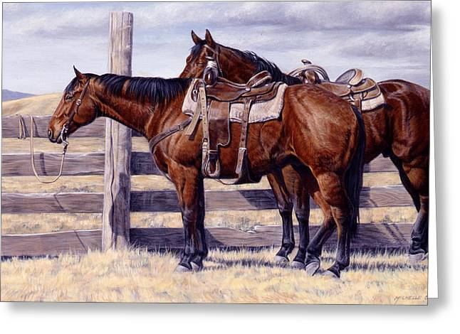 Saddle Greeting Cards - Bored Greeting Card by JQ Licensing