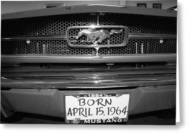 1964 Ford Emblems Greeting Cards - Born 1964 Mustang Greeting Card by Cecilia Aumen