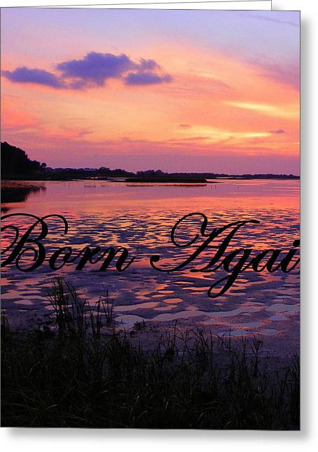 Born Again Greeting Cards - Born Again  Greeting Card by Sheri McLeroy
