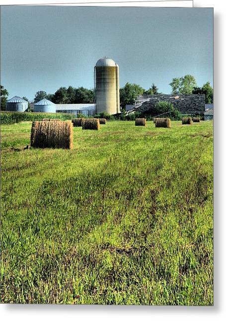 Summer On The Farm Greeting Cards - Born Country Greeting Card by Dan Sproul