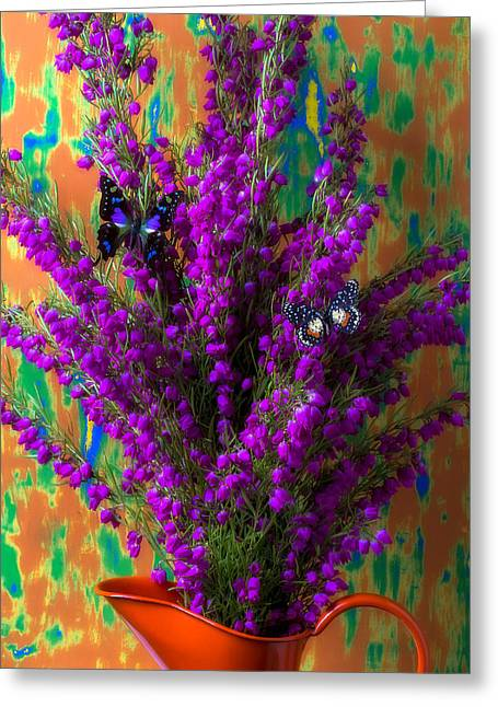 Pitcher Greeting Cards - Boronia with two butterflies Greeting Card by Garry Gay
