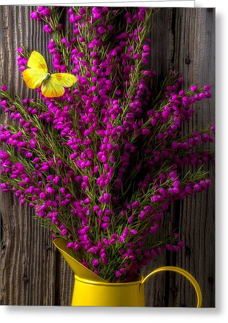 Pitcher Greeting Cards - Boronia with yellow butterfly Greeting Card by Garry Gay
