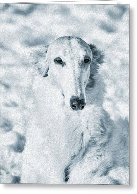 Sight Hound Greeting Cards - Borzoi Russian Hound Portrait Greeting Card by Christian Lagereek