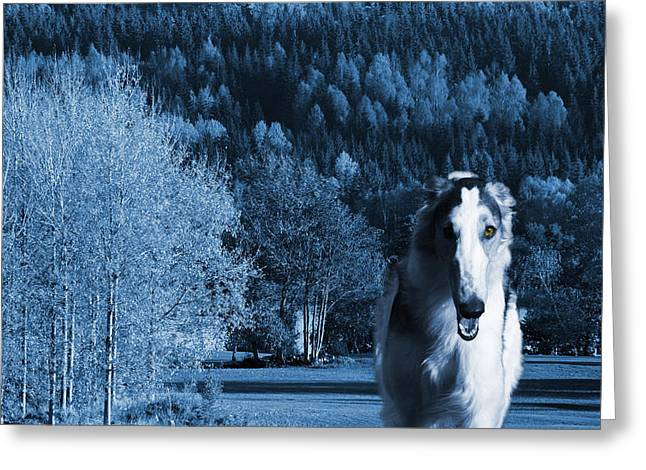 Sight Hound Greeting Cards - Borzoi wolf hound emerging from dark blue forest Greeting Card by Christian Lagereek