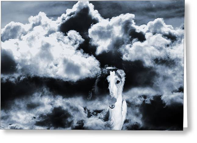 Sight Hound Greeting Cards - Borzoi Wolf Hound Emerging Through Mist And Clouds Greeting Card by Christian Lagereek