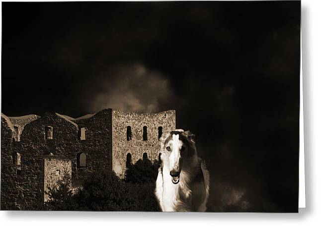 Sight Hound Greeting Cards - Borzoi Wolf Hound Hunting At Night Greeting Card by Christian Lagereek