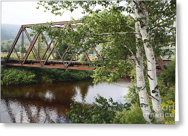 New Hampshire Logging Greeting Cards - Boston and Maine Railroad - Bretton Woods New Hampshire USA Greeting Card by Erin Paul Donovan