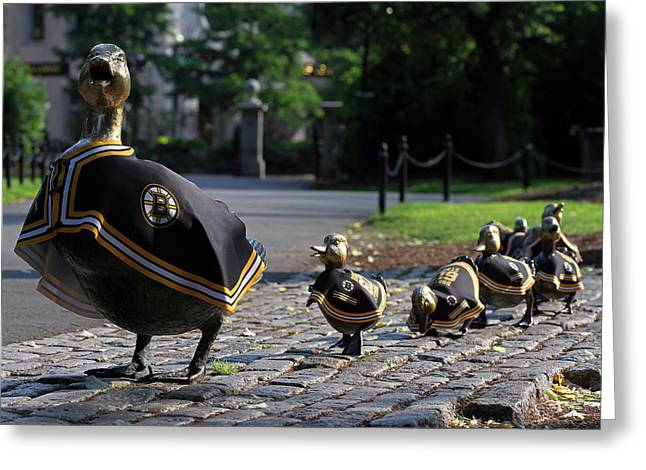 Recently Sold -  - Garden Scene Greeting Cards - Boston Bruins Ducklings Greeting Card by Juergen Roth