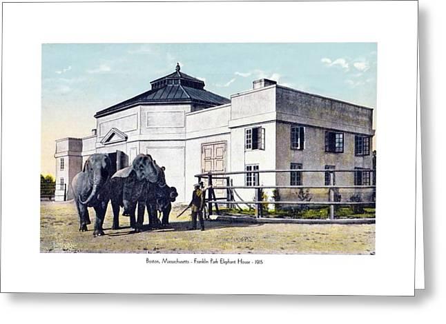 Boston Ma Greeting Cards - Boston Massachusetts - Franklin Park Elephant House - 1905 Greeting Card by John Madison