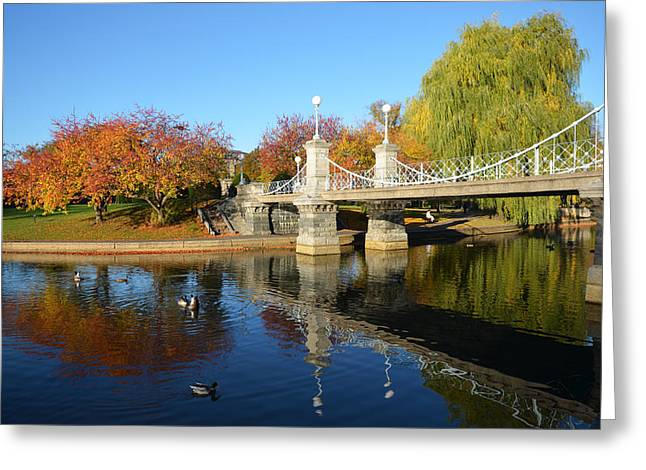 Boston Ma Greeting Cards - Boston Public Garden Autumn Greeting Card by Toby McGuire