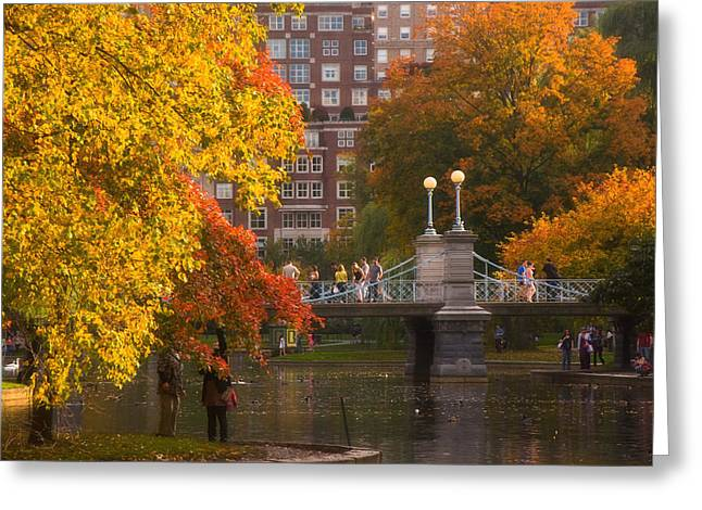 Pond In Park Greeting Cards - Boston Public Garden Lagoon Bridge Greeting Card by Joann Vitali