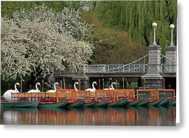 Beantown Greeting Cards - Boston Swan Boats  Greeting Card by Juergen Roth