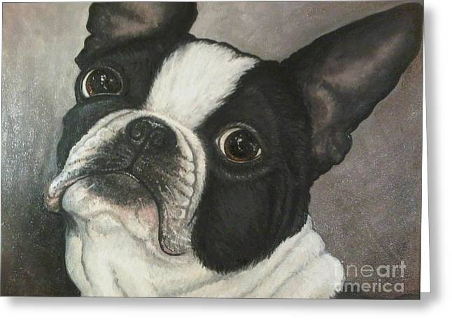 Cute Frenchie Art Greeting Cards - Boston Terrier Greeting Card by Ana Marusich-Zanor