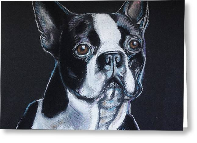 Puppies Pastels Greeting Cards - Boston Terrier Greeting Card by Annie Pierson