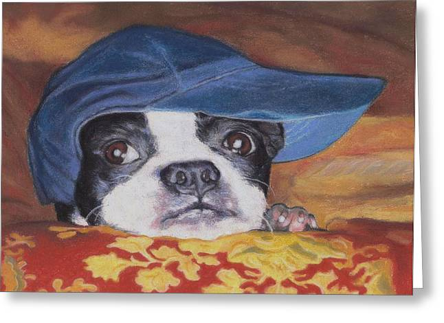 Boston Pastels Greeting Cards - Boston Terrier in a Ball Cap Greeting Card by Pamela Humbargar