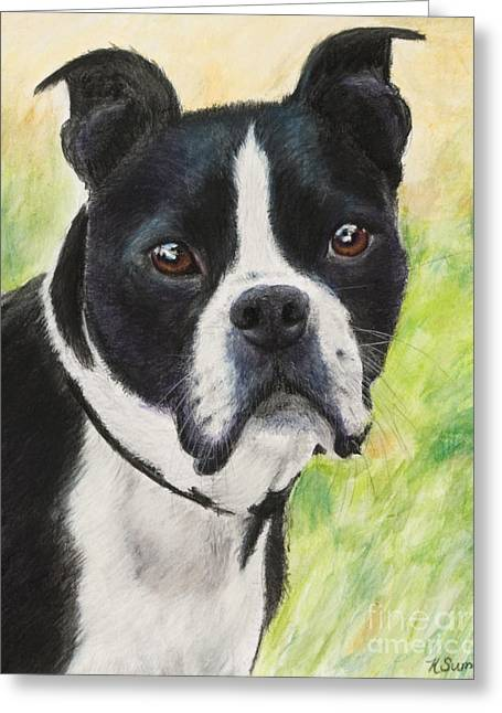 Doggy Pastels Greeting Cards - Boston Terrier Greeting Card by Kate Sumners