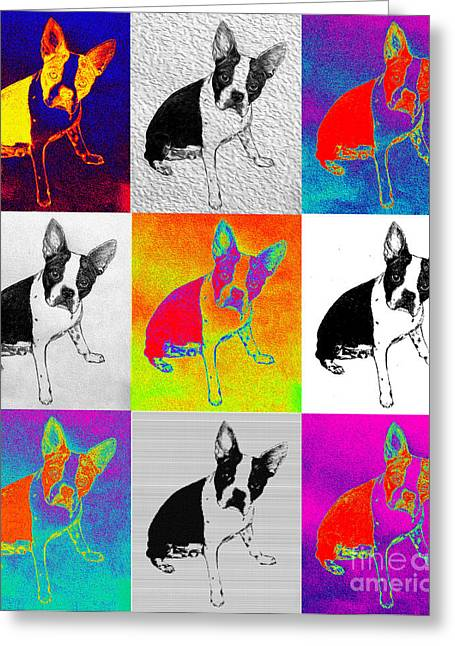 White Terrier Mixed Media Greeting Cards - Boston Terrier Pop Art Greeting Card by Jacqueline Barden