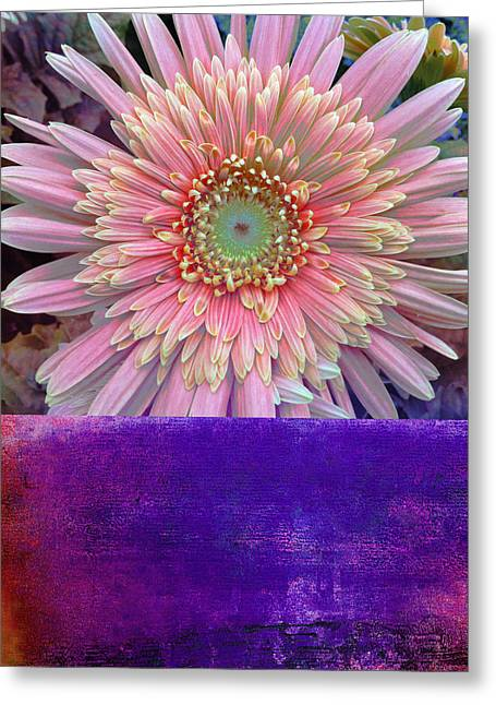 Alternative Home Decor Greeting Cards - Botanical Elements III Greeting Card by Ricki Mountain