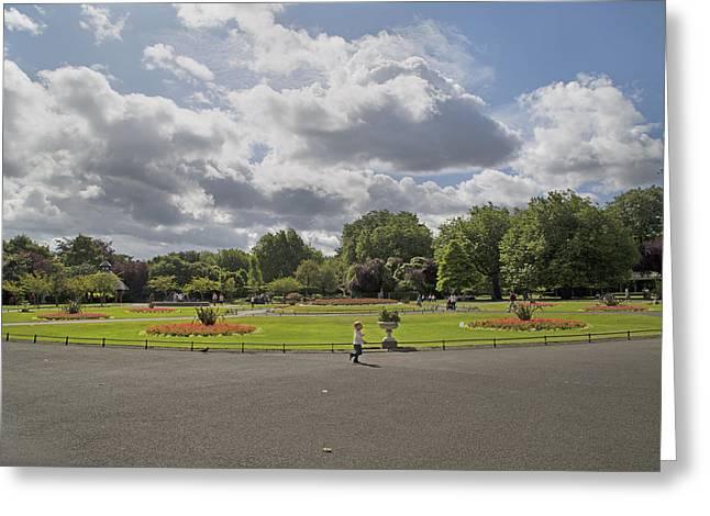 Botanical Garden Ireland Greeting Card by Betsy C Knapp