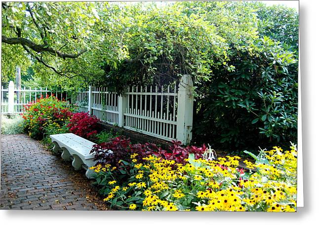 Prescott Greeting Cards - Pretty Park Bench Sits Within The Lovely Prescott Park Area Of Portsmouth New Hampshire Greeting Card by Eunice Miller