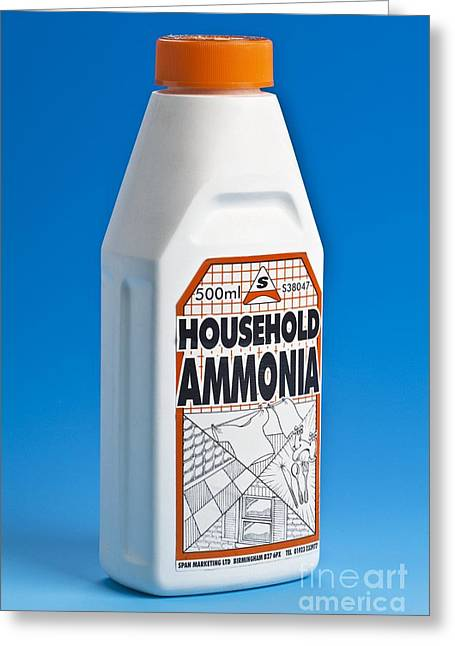 Plastic Solution Greeting Cards - Bottle Of Household Ammonia Greeting Card by Martyn F. Chillmaid