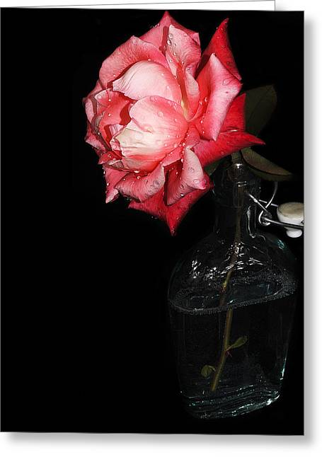 Rose Petals Greeting Cards - Bottled Rose Greeting Card by Camille Lopez