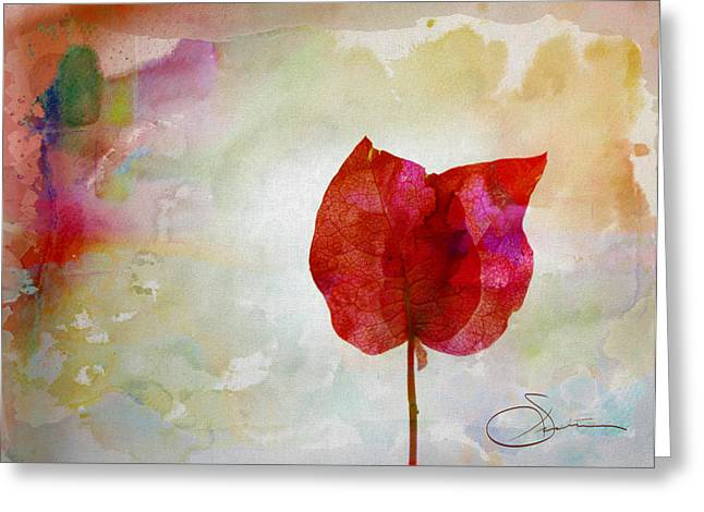 Bougainvillea 4 Greeting Card by Robert Smith