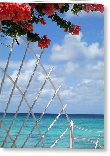 Grand Turk Island Greeting Cards - Bougainvillea Beach Greeting Card by Randall Weidner