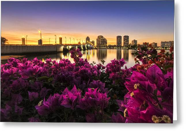Citiscape Greeting Cards - Bougainvillea on the West Palm Beach Waterway Greeting Card by Debra and Dave Vanderlaan