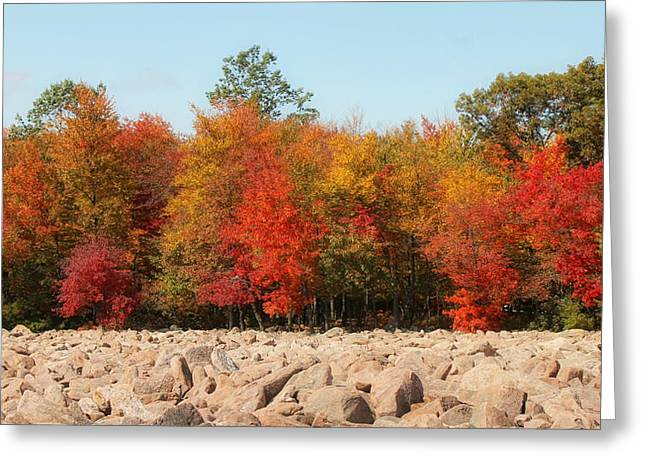 Occurrence Greeting Cards - Boulder Field III Greeting Card by Lisa Hurylovich