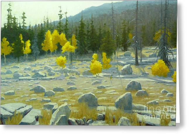 Fall Scenes Greeting Cards - Boulder strewn high mountain meadow Greeting Card by Doyle Shaw