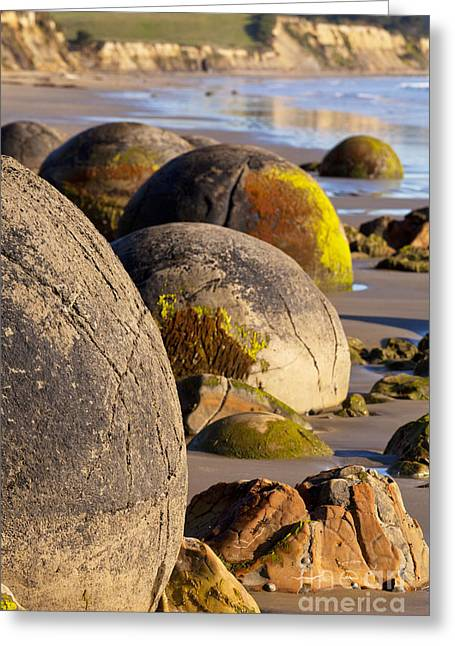 Tide Up Greeting Cards - Boulders Moeraki Otago New Zealand Greeting Card by Colin and Linda McKie