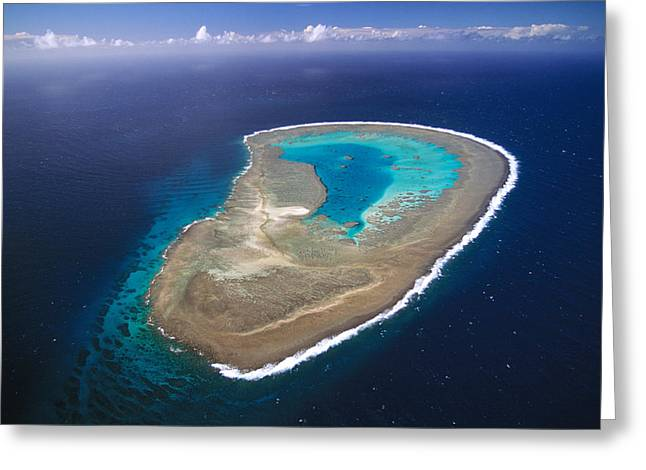 Ocean Shore Greeting Cards - Boult Reef Capricornia Cays Np Australia Greeting Card by D. & E. Parer-Cook