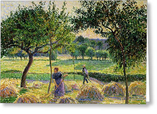 Late-summer Greeting Cards - Bountiful Harvest, 1893 Greeting Card by Camille Pissarro