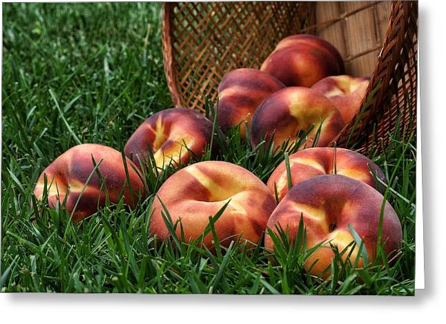 Dappled Light Greeting Cards - Bountiful Harvest Greeting Card by Nikolyn McDonald